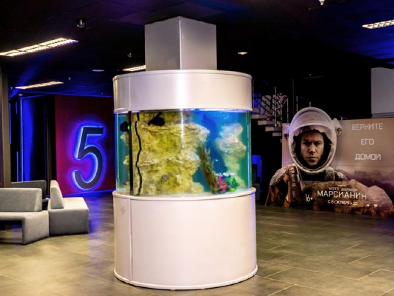 Афиша кино планета в прокопьевске сколько стоит билеты на концерт энрике иглесиаса